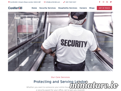Retail Security Companies