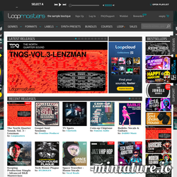 Loopmasters Pro Sample Packs, Download Royalty Free Sounds, Sample Lib网站缩略图